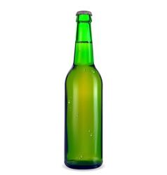 Green bottle of beer vector image