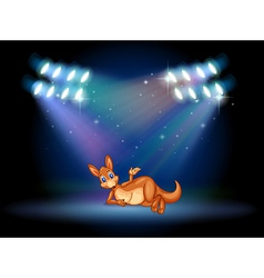 A kangaroo at the stage with spotlights vector