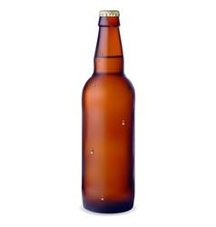 Dark bottle beer vector
