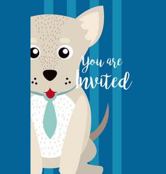 dog cute animal cartoon invitation card vector image