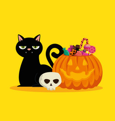 halloween card with pumpkin and black cat vector image