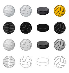 Isolated object of sport and ball logo set of vector