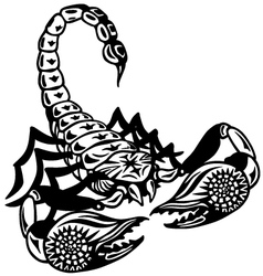 Scorpion black white vector