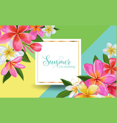 summertime floral poster tropical plumeria vector image