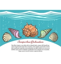 Underwater travel poster with sea shells vector image