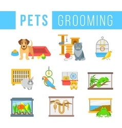 Animals pets grooming flat colorful vector image