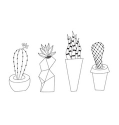 cactus doodle style isolated on vector image