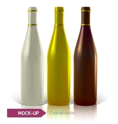 set of cocktail bottles vector image vector image