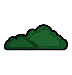 isolated cute bush vector image