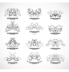 Calligraphic decoration elements for headline vector image vector image
