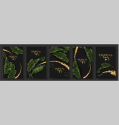 Banners set of banana tropic leaf vector