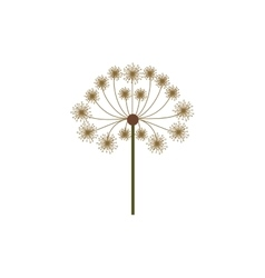 colorful dandelion with stem and pistil vector image