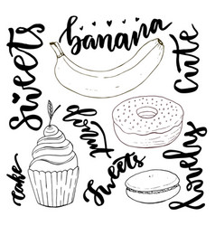 hand drawn sweets doodle set sketches sweets vector image