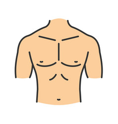 Muscular male chest color icon vector