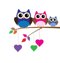 owl mom dad vector image