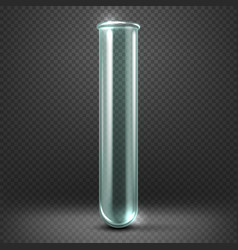 Realistic empty glass test tube template vector image
