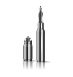 rifle bullet isolated on white vector image