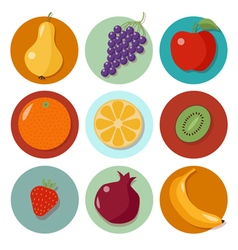 Set of Different Fruits Fruits Icons vector