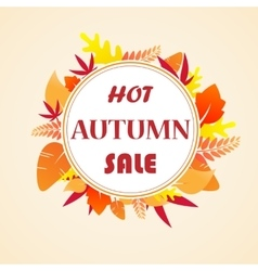 Leaves autumn sale vector image vector image