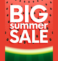 big summer sale on watermelon surface texture with vector image