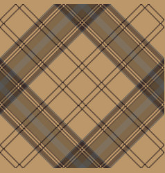 brown plaid check tartan seamless pattern vector image