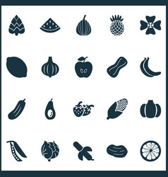 food icons set with legume melon apple and other vector image