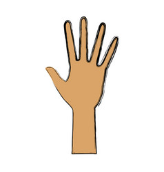 human hand five finger palm open gesture vector image