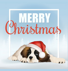 merry christmas frame dog vector image