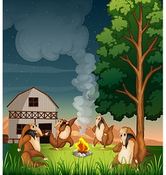 Playful wild animals making a campfire vector