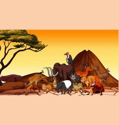 Scene with animals in savanna field vector