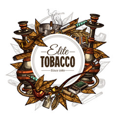 tobacco and smoking background vector image