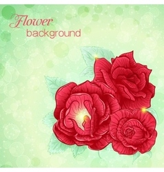 a bouquet of roses vector image