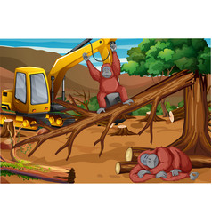 Background scene with monkey and deforestation vector