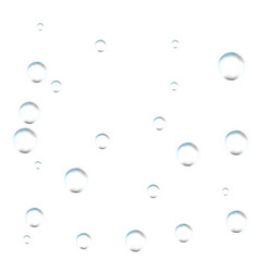 bubbles on white background simple design clear vector image