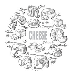 circular background of different cheese top view vector image