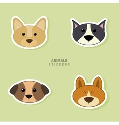 Cute dogs Face vector