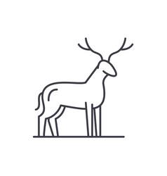 deer line icon concept deer linear vector image