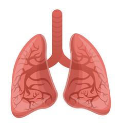 Healthy lungs icon cartoon style vector