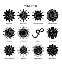 human virus types icon set in flat style vector image