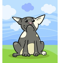french bulldog cartoon vector image