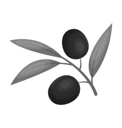 Branch of olives icon in monochrome style isolated vector