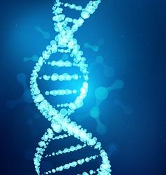 DNA preview vector