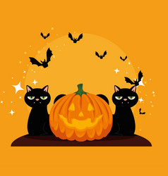 halloween card with pumpkin and cats blacks vector image