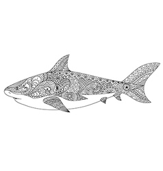 shark coloring vector image