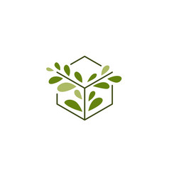 tree leaf box cube logo icon vector image