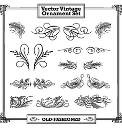 vector vintage floral and feather ornament set vector image