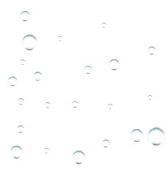 Bubbles on white background simple design clear vector