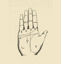 chiromancy hand rough vintage vector image