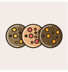 Choco chip cookies with orange and chocolate vector