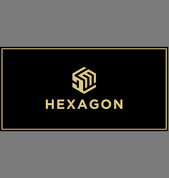 dm hexagon logo vector image